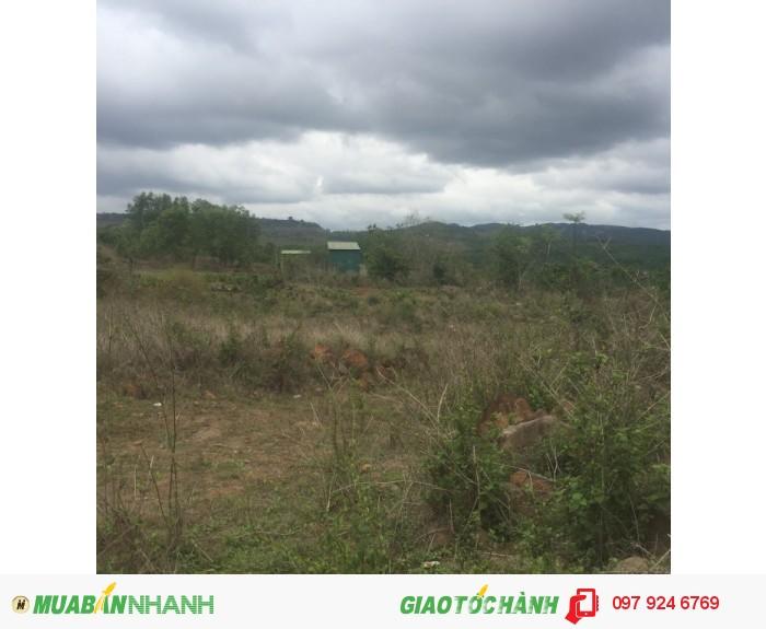 Bán gấp Đất trang trại 30ha điện 3pha Giá 580tr/ha