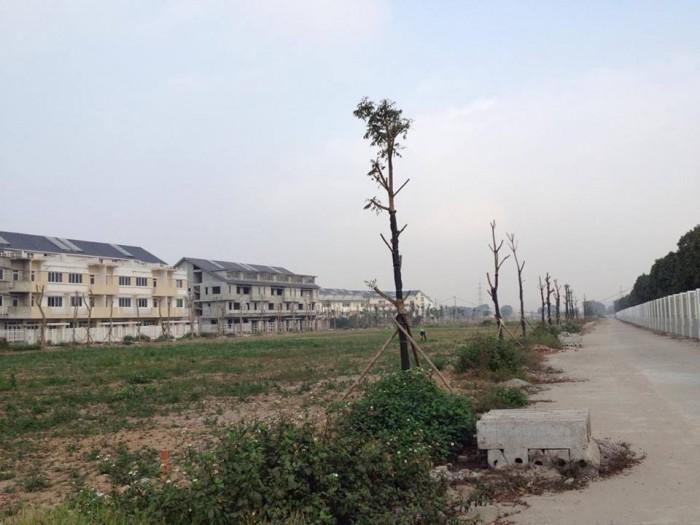 Cần bán đất thổ cư,MT đường Nguyễn Trung Trực Long An,SHR