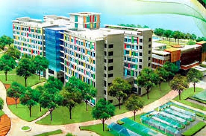 Nền góc 240m2 gần Bệnh viện NHI ĐÔNG III, Tân Kiên, Bình Chánh, HCM