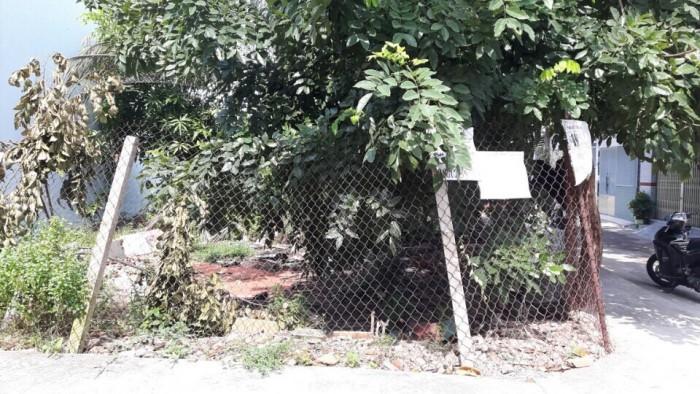 Bán Lô Đất Thổ Cư  Phạm Văn Chiêu, Phường 16, Gò Vấp, Hẻm Xe Hơi 4m Thông, 5x16m, Hướng Đông Bắc