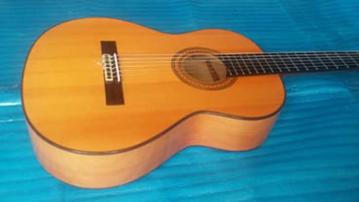 Guitar Jose Antonio 12F Tây Ban Nha