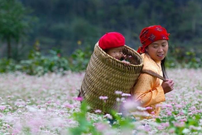 Tour Đông Tây Bắc Hà Giang - Cao Bằng - Bắc Kan 5N4Đ
