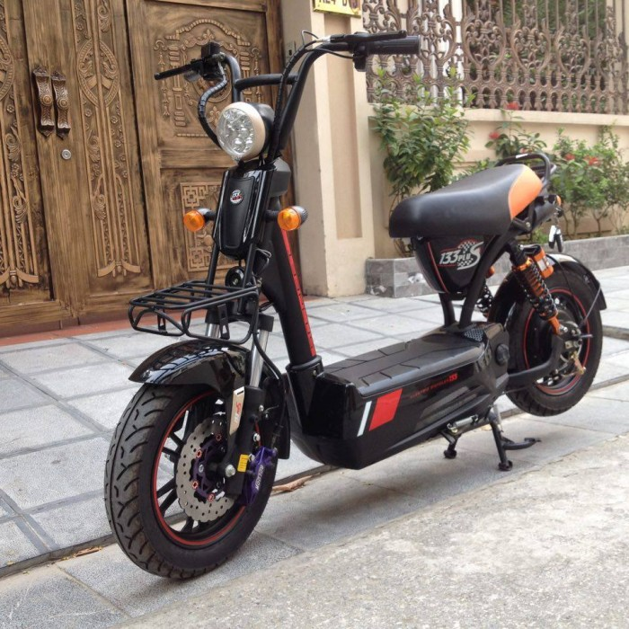 Xe đạp điện 120km/lần sạc