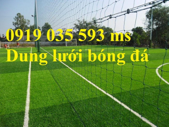 Lưới xây dựng thể thao, lưới sân golf, lưới bóng đá, lưới nông nghiệp, lưới che nắng6