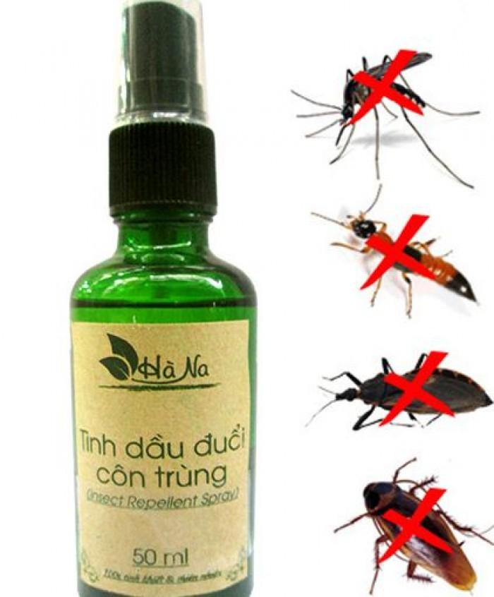 Tinh dầu đuổi côn trùng, muỗi gián hiệu quả