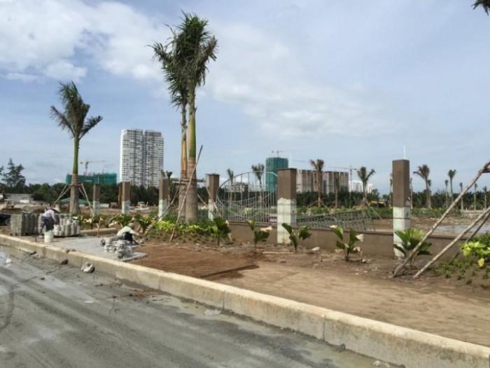 Đất nền mặt tiền Đào Trí,quận 7 giá diện tích 80-100m2 hotline