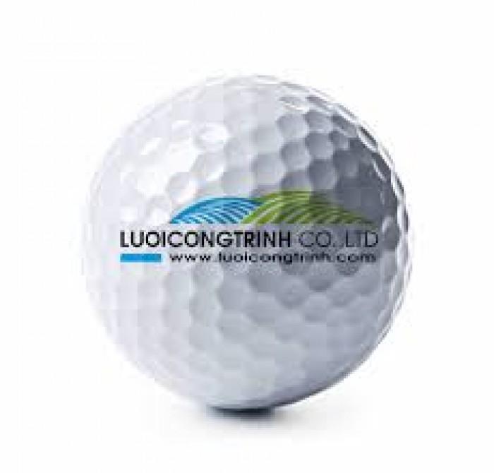 Cung cấp bóng golf chất lượng cao3