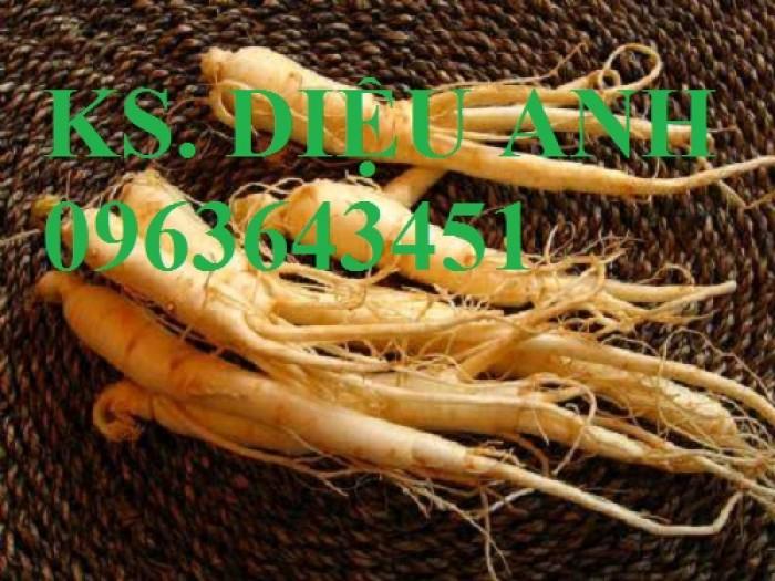 Cung cấp cây giống, hạt giống đẳng sâm số lượng lơn, bao tiêu thu mua sản phẩm.