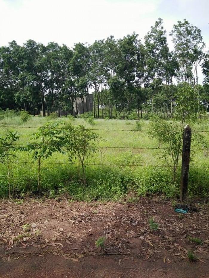 Lô đất giá siêu rẻ 90m2/ 245triệu ở Định Hoà Bình Dương