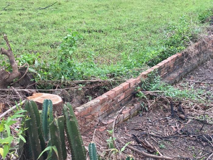 Cần bán gấp đất ở trung tâm xã Vĩnh Thanh - Nhơn Trạch - Đồng Nai (khu dân cư đông đúc) chỉ 45 triệu/m ngang