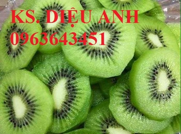 Bán cây giống mới lạ: kiwi, cherry,việt quất, chanh ngón tay, bưởi lùn, dâu quả dài, nho thân gỗ, quất ngọt
