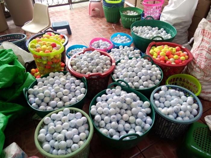 Cỏ golf,lưới golf,bóng golf,thảm phát banh, tee golf cao su dẻo, máy phát bóng cho sân tập golf