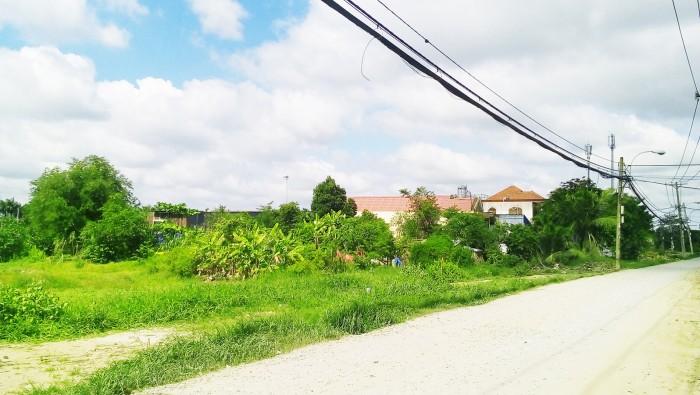 Bán 2400m2 đất xây xưởng, nhà vườn Bà Cả, Bình Chánh.