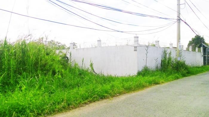 Bán đất vườn 1000m2, 25x40m, 2.35 tỷ Phong Phú, Bình chánh.
