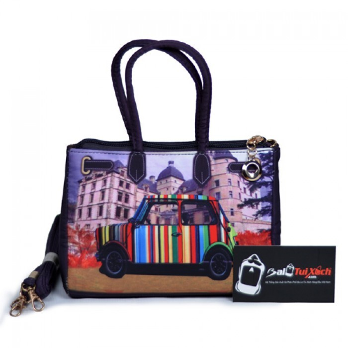 Túi xách in hình đặc sắc phù hợp với các bạn nữ cá tính