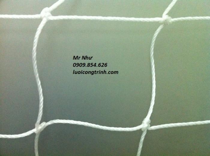 Lưới khung thành bóng đá mini0