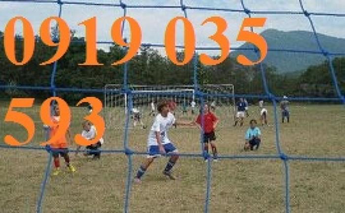 Lưới an toàn sân banh, lưới bóng đá, lưới khung thành gôn chuyên dụng, lưới xây dựng thể thao2