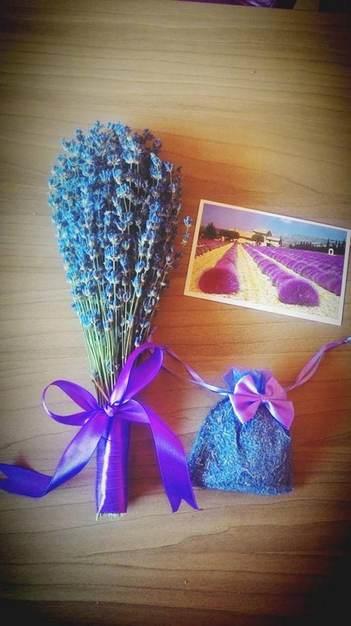 Mách bạn mua hoa oải hương khô ở đâu?1