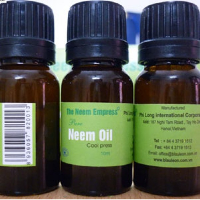 Bán tinh dầu Neem - Chữa mụn, chàm, massage làm đẹp da
