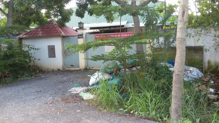 Đất biệt thư,quốc lộ 50.xã Phong Phú ,huyện Bình Chánh, chỉ 9tr/m2