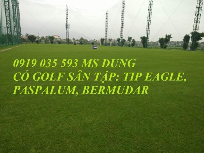 Nhận cung cấp và thi công lưới an toàn lưới sân tập golf sân bóng đá