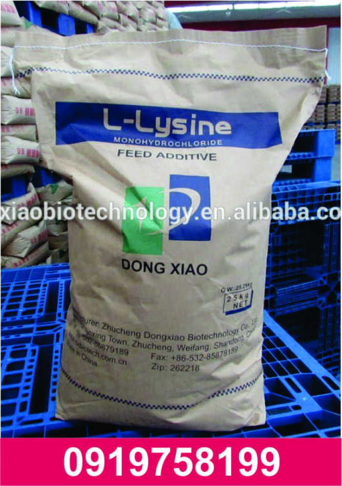 L-Lysine 98,5%