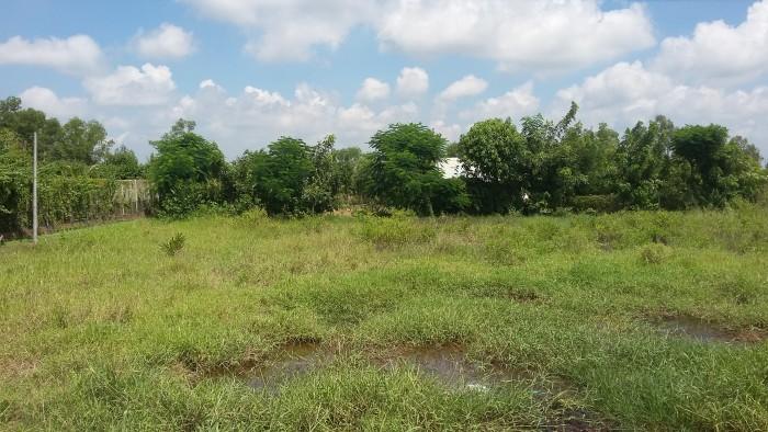 Đất xây biệt thự dt 2000m2, ngang 37m2 đường Phong Phú.Giá 4 tỷ