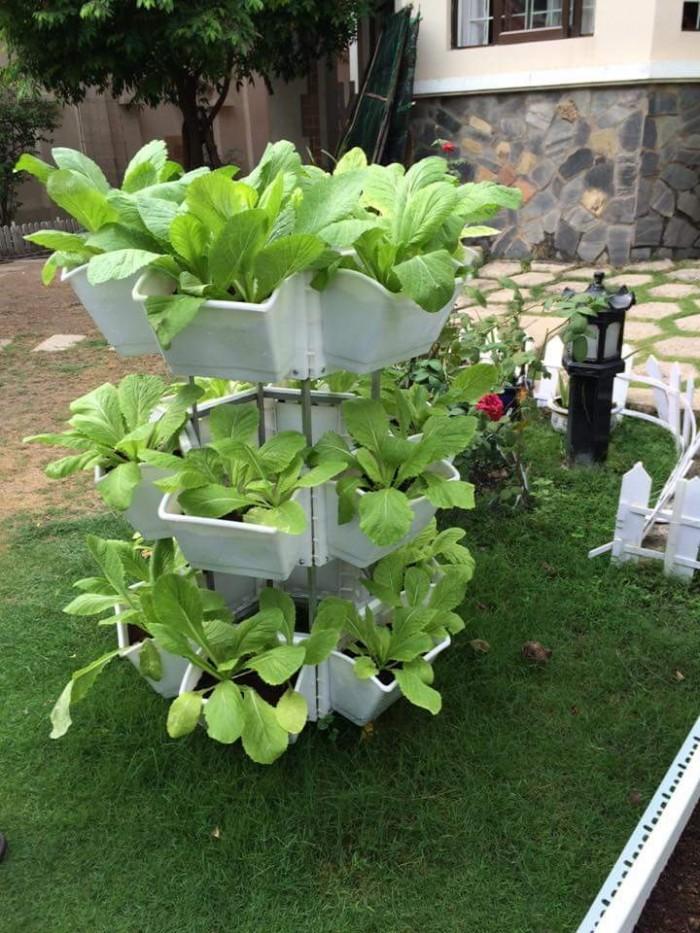 Bộ trồng rau di động kệ lục giác QA03