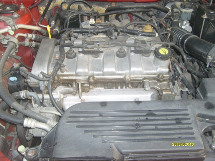 Ford Laser At -203 xe cọp 5