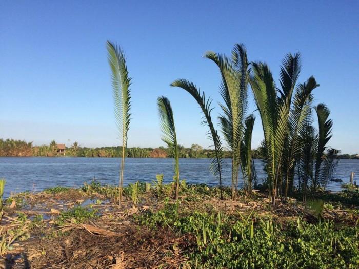 Kẹt Tiền Bán Gấp 2 Lô đất Nguyễn Duy Trinh - Nguyễn Xiển quận 9. Khu vực Cửa ngõ khu công nghệ cao Tp.HCM.