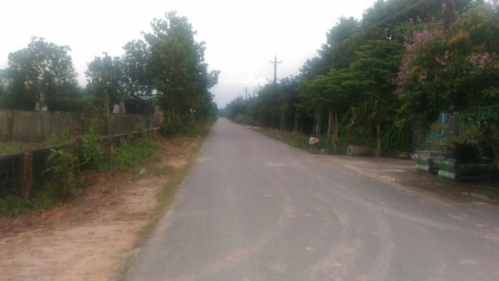 Cần bán gấp lô đất nền An VIễn, Trang Bom,Đồng Nai,mặt tiền đường Phùng Hưng