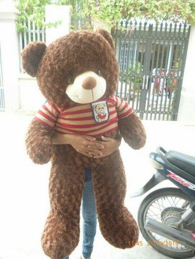Gấu teddy 1m4