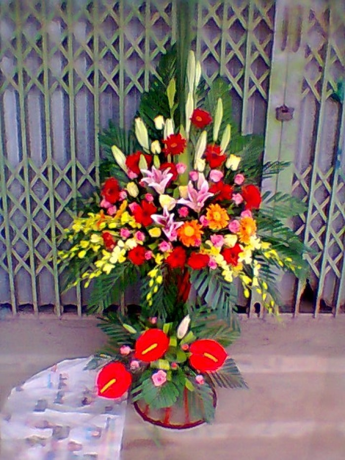 Đặt mua hoa hoa khai trương tại thành phố Thanh Hóa, giao hoa khai trương tại thành phố Thanh Hóa1