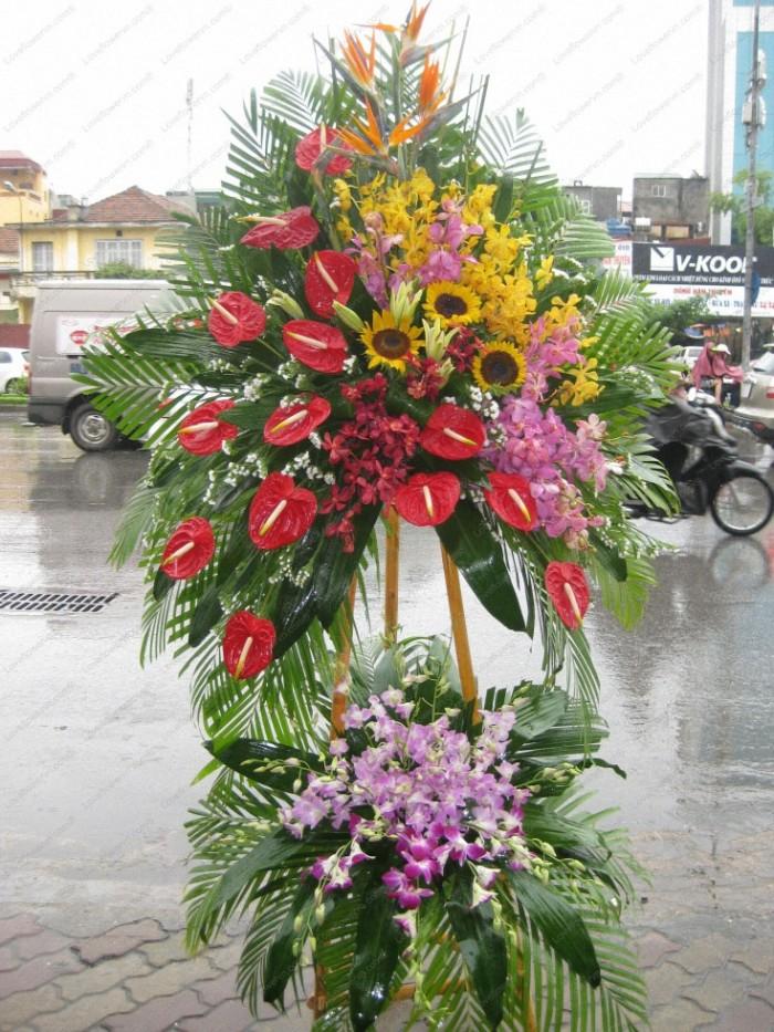 Đặt mua hoa hoa khai trương tại thành phố Thanh Hóa, giao hoa khai trương tại thành phố Thanh Hóa6