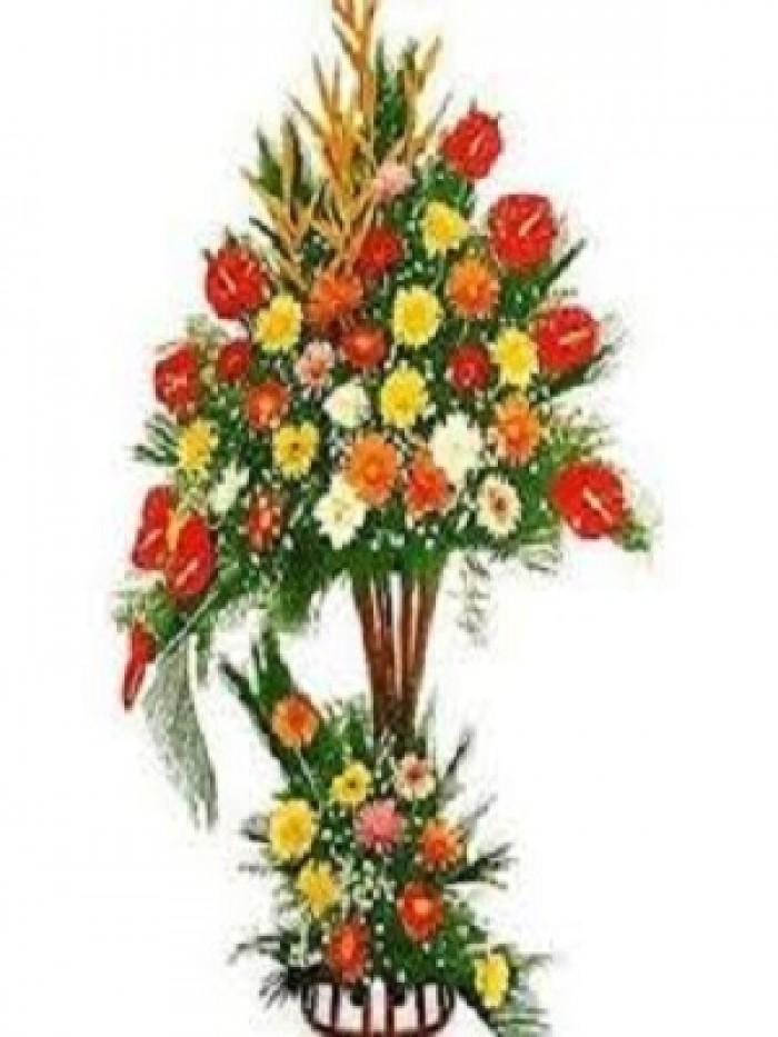 Đặt mua hoa hoa khai trương tại thành phố Thanh Hóa, giao hoa khai trương tại thành phố Thanh Hóa17