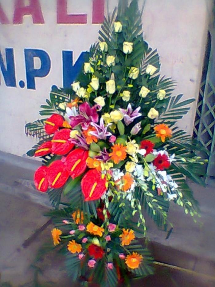 Đặt mua hoa hoa khai trương tại thành phố Thanh Hóa, giao hoa khai trương tại thành phố Thanh Hóa24