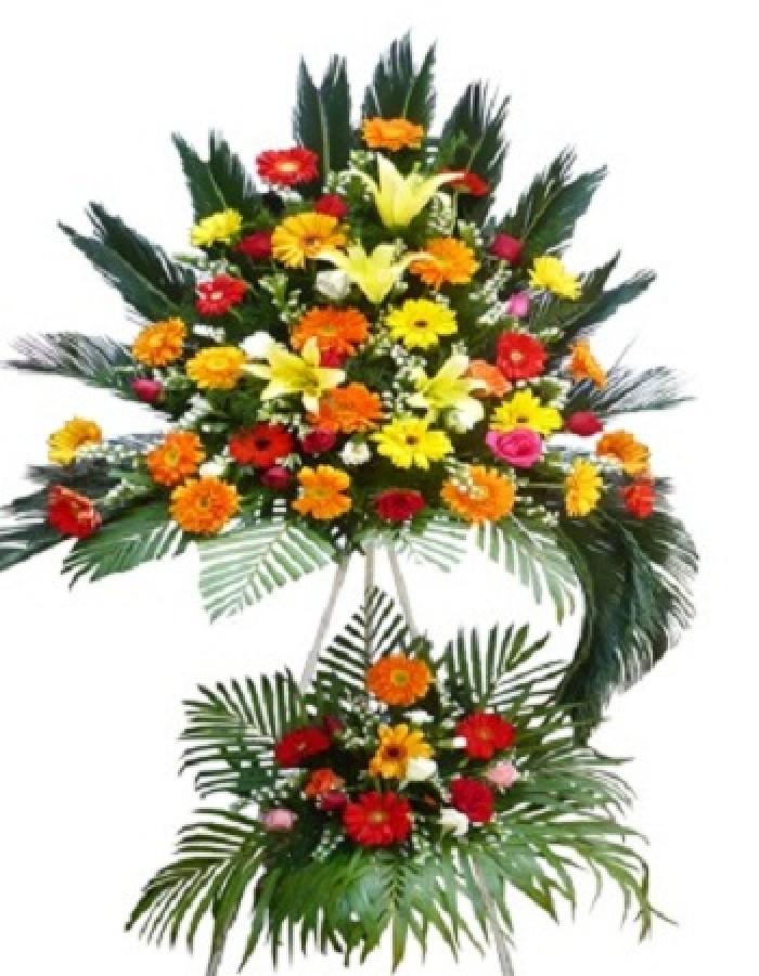 Cửa hàng bán điện hoa bỉm sơn, shop hoa tươi bỉm sơn giao hoa tươi tận nơi. Đặt điện hoa chúc mừng sinh nhật, khai trương, hoa tang lễ tại bỉm sơn2