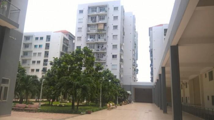 Bán căn hộ Phú An, ngay Metro Q12, có sổ hồng, sân vườn riêng