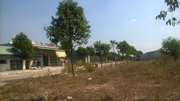 Sang 600M2 đất T.CƯ, Ngay KCN, Tiện xây trọ 170TR/NỀN
