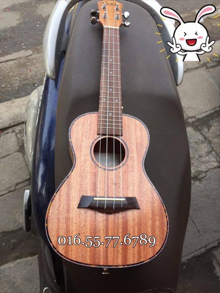 Đàn ukulele UK23 concert siêu đẹp