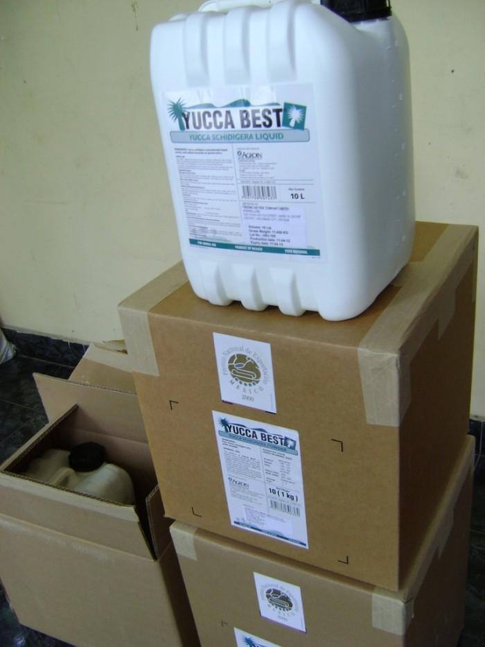 Bán: YUCCA là chất chiết xuất hoàn toàn 100% từ cây Yucca Schidigera, chất xử lý đáy ao