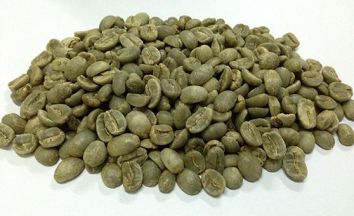 Bán máy, hạt cafe và chuyển giao công nghệ rang xay cafe nguyên chất1