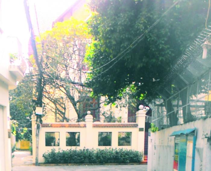 Bán nhà 2 mặt tiền 6x20m cấp 4 mặt tiền đường Nguyễn Đình Khơi, P.4, Q.Tân Bình