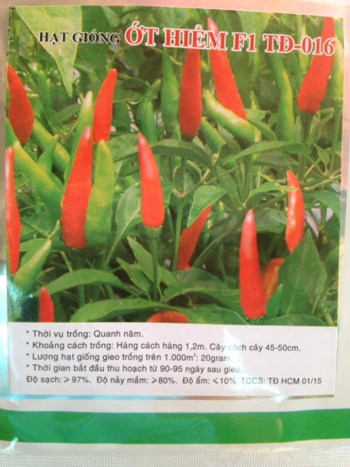 Hạt giống rau củ quả các loại, giao tận nhà, giá tại kho rau muống, cà chua, rau mầm, cải xanh