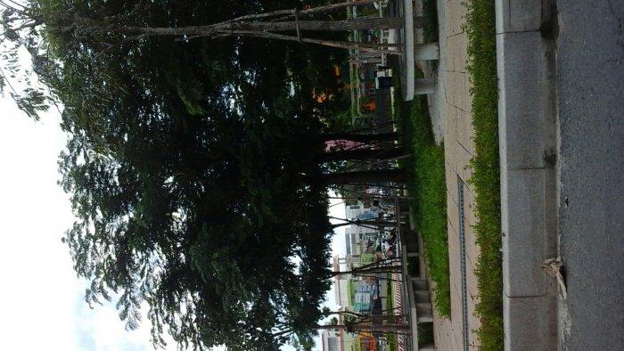 Đất thổ cư 100 %  đôi diện  Công viên Hùng Vương
