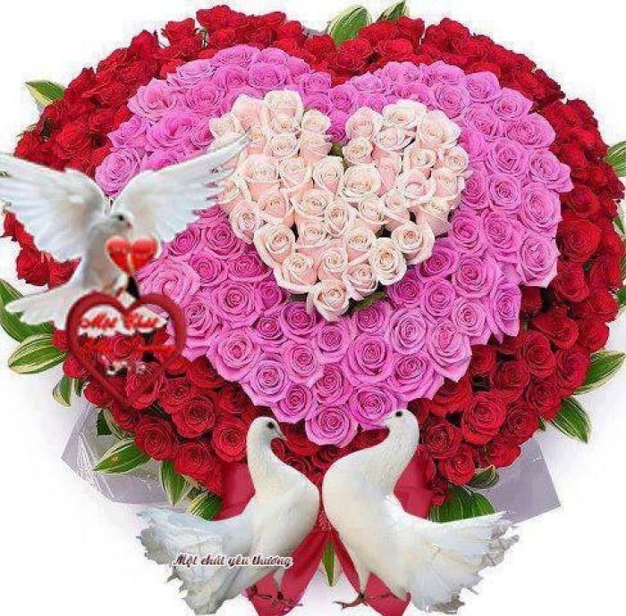Đặt mua hoa hoa khai trương tại thành phố Thanh Hóa5