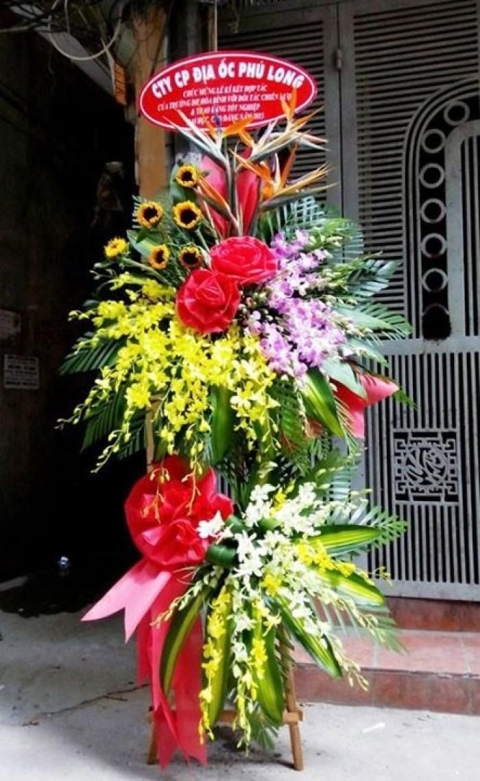 Đặt mua hoa hoa khai trương tại thành phố Thanh Hóa, giao hoa khai trương tại thành phố Thanh Hóa22