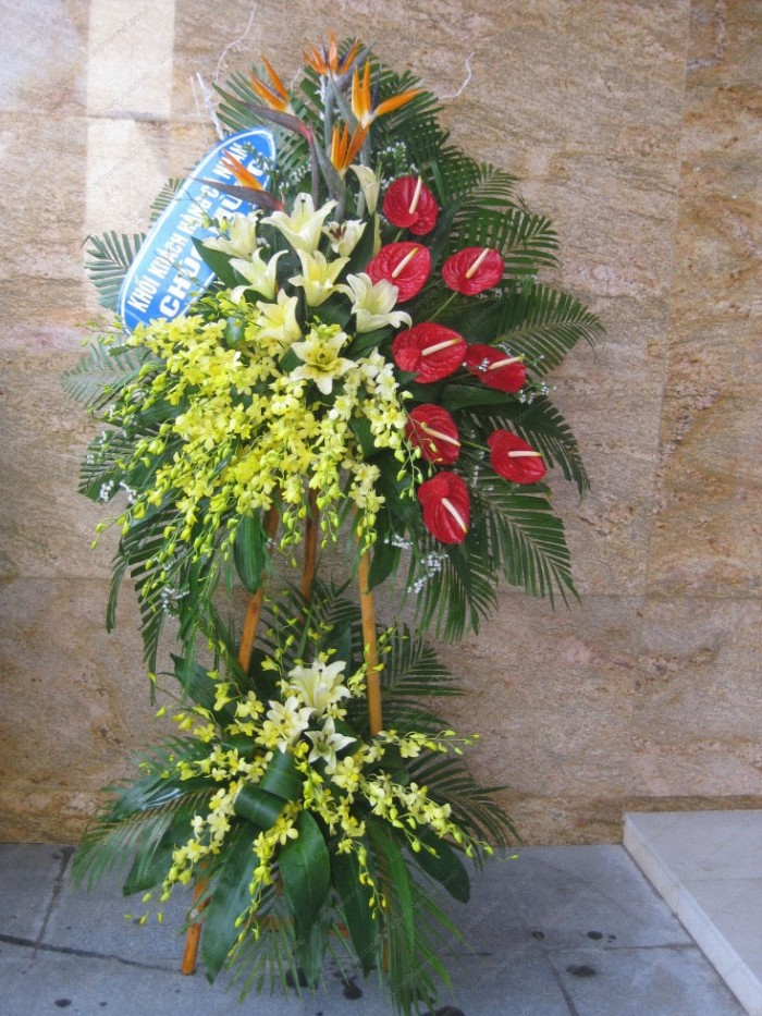 Đặt mua hoa hoa khai trương tại thành phố Thanh Hóa, giao hoa khai trương tại thành phố Thanh Hóa30