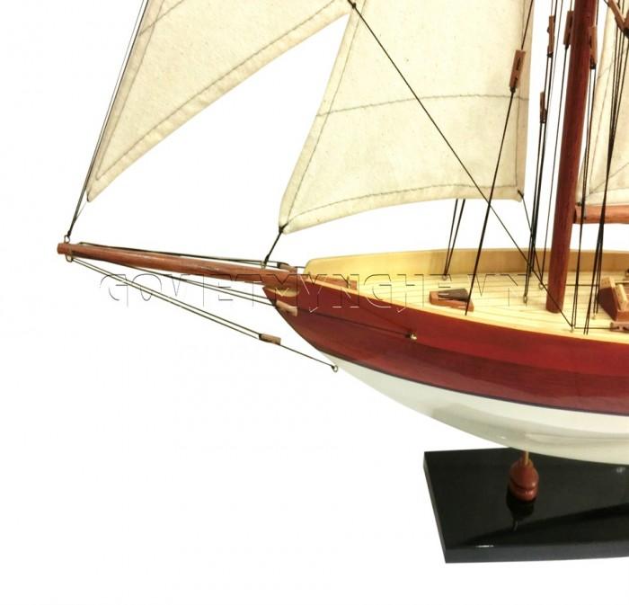 Mô hình du thuyền gỗ Penduick 70cm2