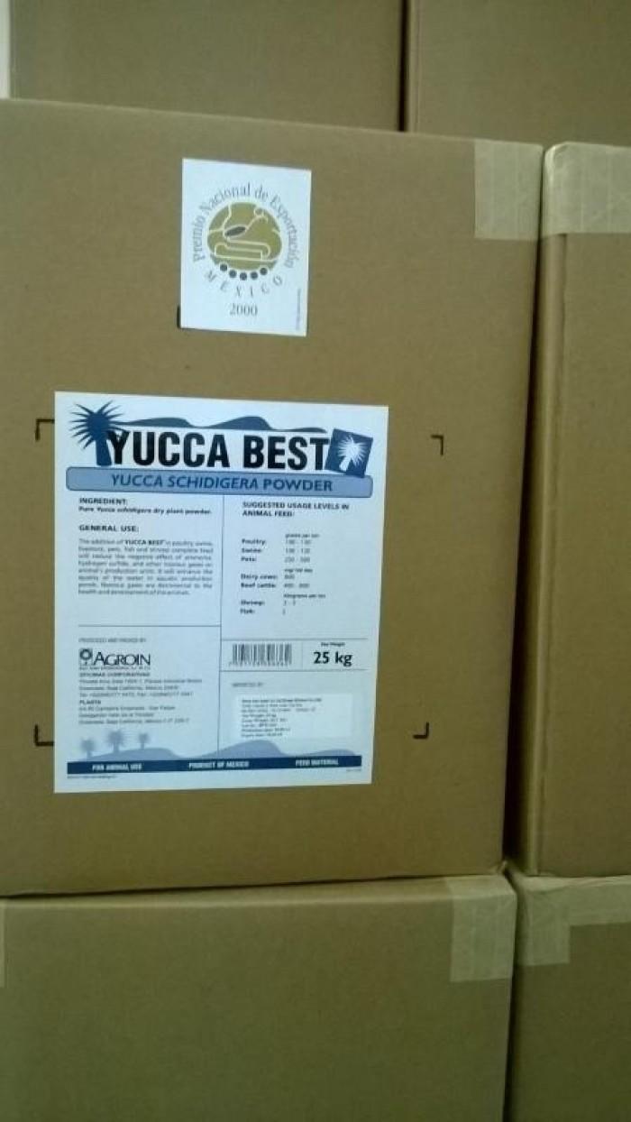 Cần bán: YUCCA là chất chiết xuất hoàn toàn 100% từ cây Yucca Schidigera